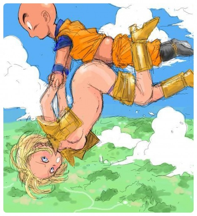 Cartoon Sex/ Dragonball